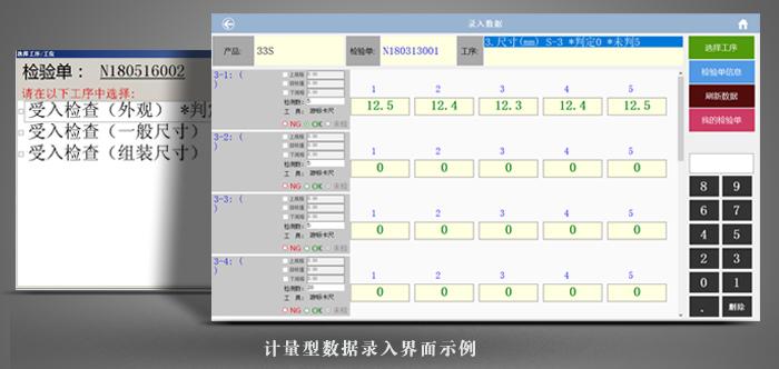 计量型数据录入界面示例